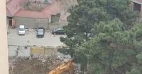 """Abşeronda yaşıllıq """"qətliamı"""" :Onlarla hündür ağaclar məhv edildi (VİDEO-FOTO)"""