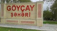 Sənədlərini Göyçay rayon Tibbi-Sosial Ekspert Komissiyasına təqdim etsə də... - GİLEY