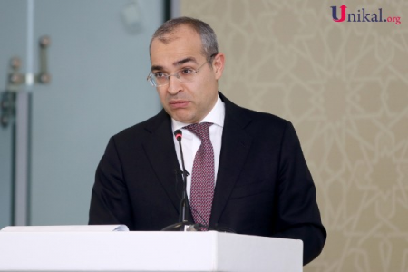 """""""Yaradılmış fondlara özəl sektorun köçürmələri üstünlük təşkil edir"""" - Nazir"""
