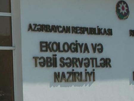 Cənub bölgəsində meşələrin məhvi və ekokorrupsiya: yeni faktlar üzə çıxdı/